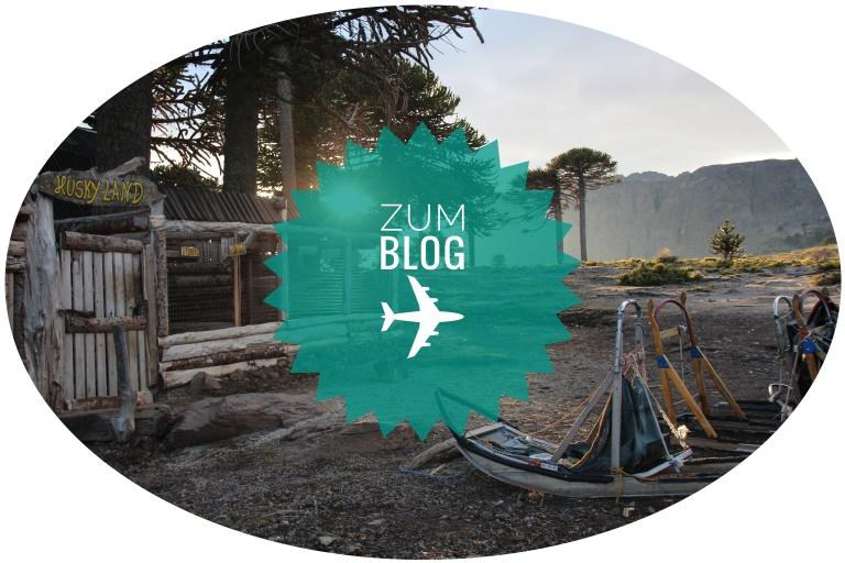 button zu den blogeinträgen